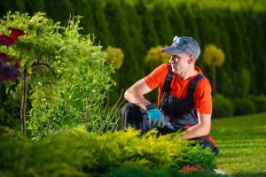 Professional man looking at backyard