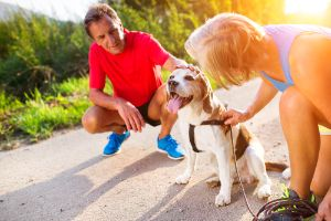 dog panting after exercise