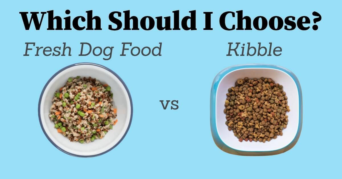 fresh dog food vs kibble