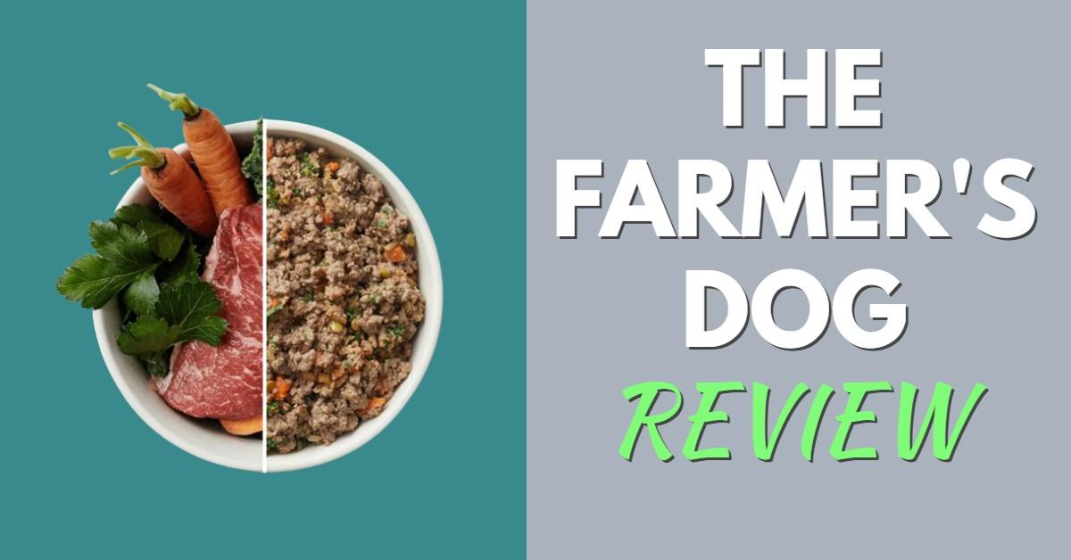 the farmers dog review