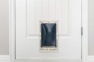 Door with installed pet door
