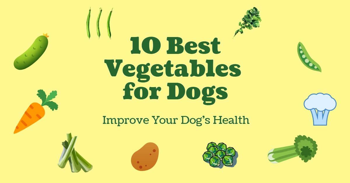 best vegetables for dogs