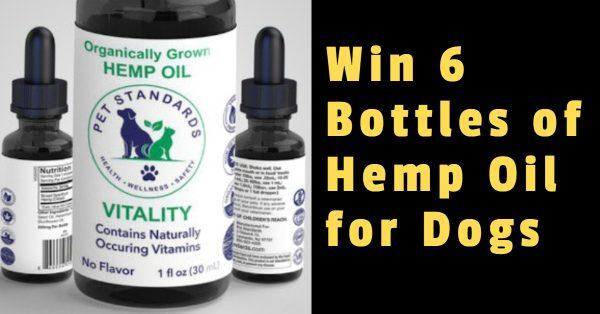 Win 6 Bottles of Hemp Oil for Dogs
