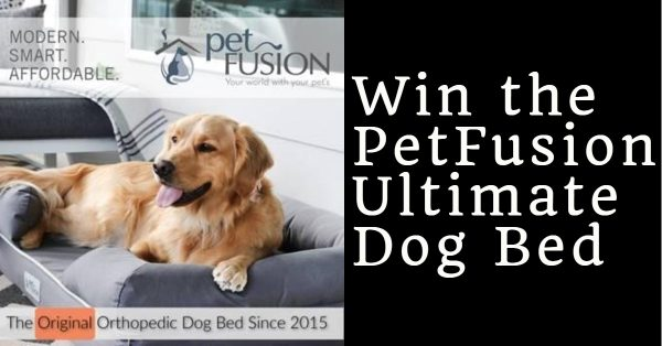 Win the PetFusion Ultimate Dog Bed