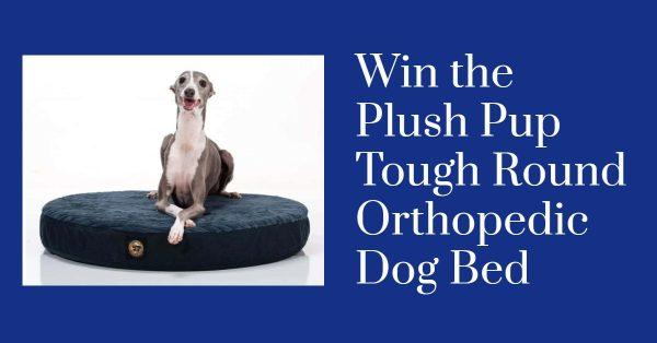 Win the Plush Pup Tough Round Orthopedic Dog Bed